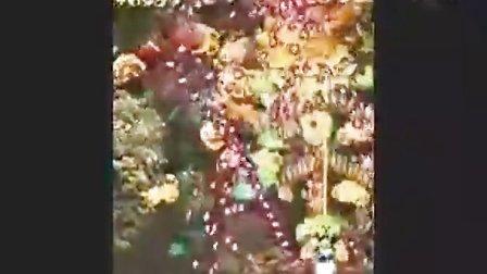 虫姫さま最终BOSS第一形态达人演示