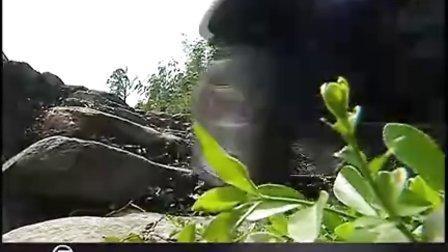 春风X6 全地形车震撼视频 【猎户座 www.liehuzuo.com】