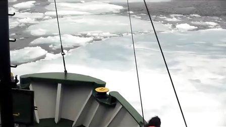 保护北极,保护我们自己——张韻琪的北极故事