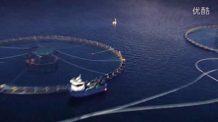 甘泽鲜三文鱼,从挪威直飞中国!世界最先进工厂制造