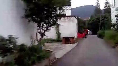树山村四季悦温泉电动观光车越野