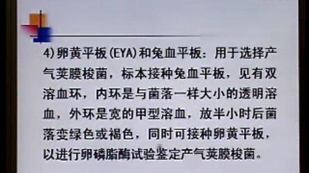 《临床微生物检验》第21讲-43讲-中国医科大学