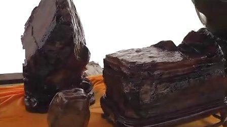 首届中国(旌德)灵芝产品博览交易会奇石盆景展(2011.9.27)