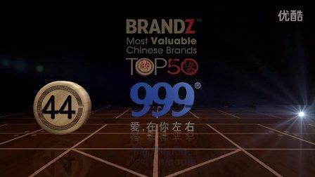 BrandZ Chinese Brands 999