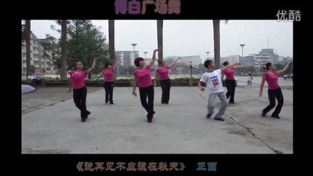 博白广场舞-《 说再见不应该在秋天 》(正面)