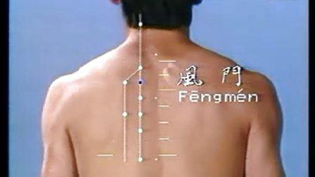 中医针灸讲座视频