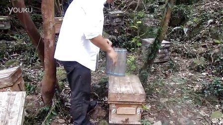 蜂蜜减肥法  孕妇可以喝蜂蜜吗 牛奶加蜂蜜