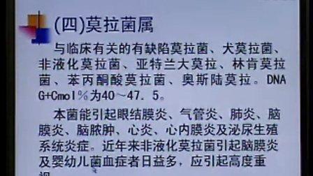 《临床微生物检验》第17讲-43讲-中国医科大学