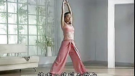 初级瑜伽A-14T字平衡式