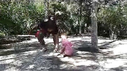 儿童公园与鸽子共欢乐