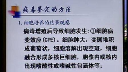 《临床微生物检验》第09讲-43讲-中国医科大学