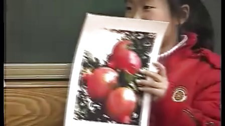 小学三年级语文优质课展示上册《石榴》_苏教版_刘媛