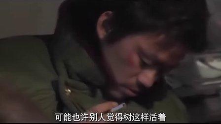 电影《Hello!树先生》王宝强采访花絮