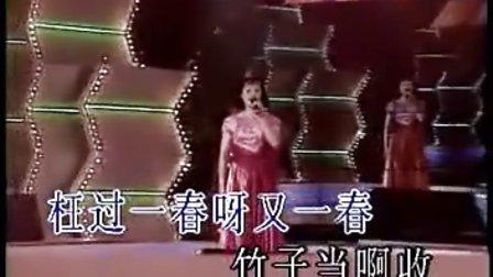 罗宁娜-世上哪有树缠藤KTV