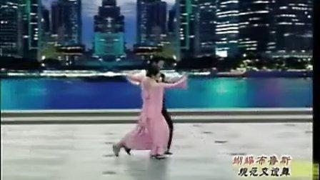 中国交谊舞曲教学(慢三步) 一帘幽梦