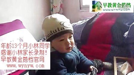 花园宝宝中文版全集-13个月小林宝宝秀英语