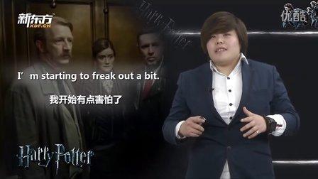 解析《哈利波特7上》-崩溃与纠结(新东方名师)