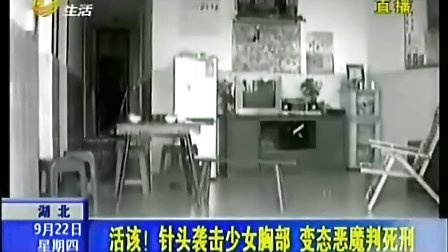 湖南男子持针头袭少女胸部 疯狂作案29起被判死刑