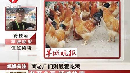 冬至今至 活鸡热卖 111222 每日新闻报