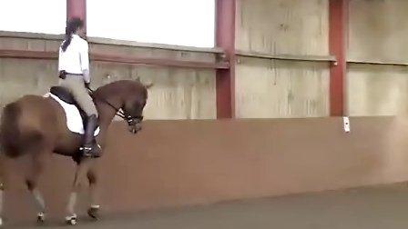 年輕馬教學影片 高清