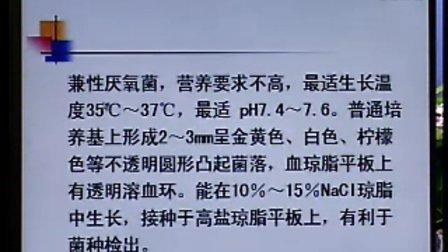 《临床微生物检验》第11讲-43讲-中国医科大学