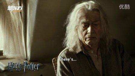 """解析《哈利波特7下》-你没见过的""""习语"""" (新东方名师)"""