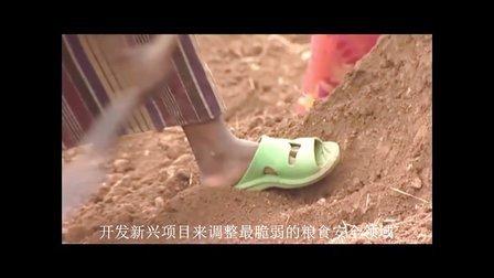 气候变化给全球饥饿带来的问题和挑战:世界粮食计划署在行动