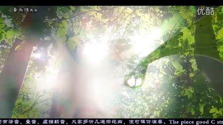 清清玉湖水 音乐佳C调葫芦丝名曲欣赏 杨捌伍作品