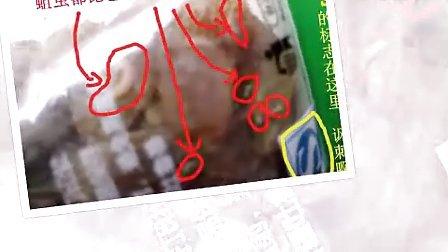 百味林葡萄干蛆虫