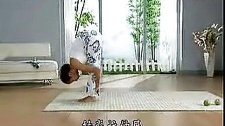 初级瑜伽A-05拜日式