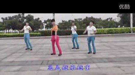 [精品]动动广场舞教学 高原红__clip