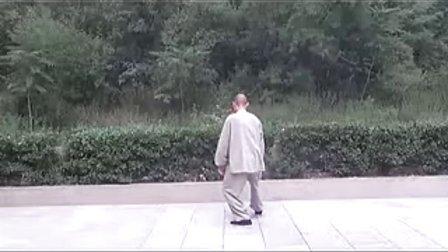 李占英4-8手挥琵琶杨式太极拳85式(精讲三)