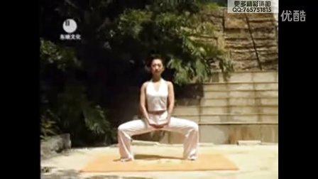 七日瘦身瑜伽第3三集 视频下载 减肥瑜伽 瘦身 瘦腹 瘦脸方法