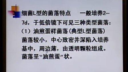 《临床微生物检验》第07讲-43讲-中国医科大学
