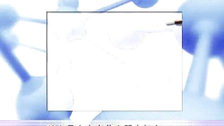 妇科上环视频(宫内节育器放置术)