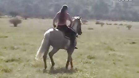 牛逼的美女驯马
