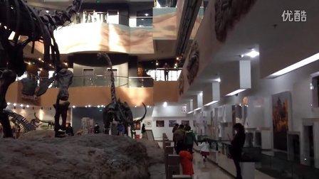 【火热庭州 温暖昌吉】一日游之昌吉恐龙馆里大恐龙