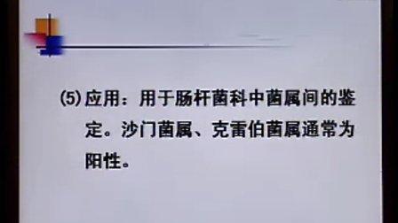 《临床微生物检验》第04讲-43讲-中国医科大学