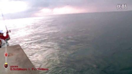 全層釣法-真鯛
