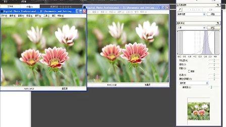 如何在DPP软件中使用相片风格