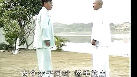 赵堡太极拳大架实战用法--王长安_标清
