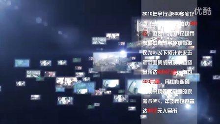 中国建筑装饰装修材料协会天花吊顶材料分会-----天花吊顶行业宣传片