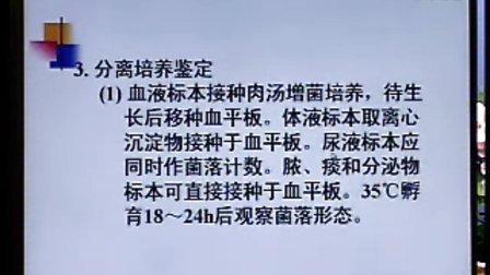 《临床微生物检验》第13讲-43讲-中国医科大学