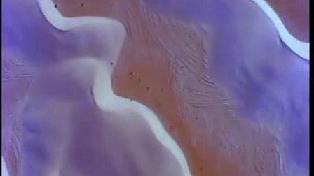 沙漠远景:白沙