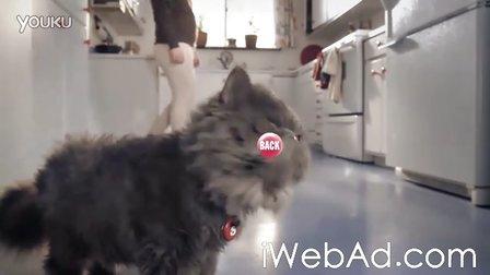 Skittles Touch_ Cat营销案例