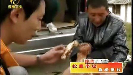 极品山珍松茸菌-www.021huhui.com.cn