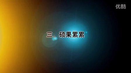 德莱奇十周年庆视频(多来劲吊索具)