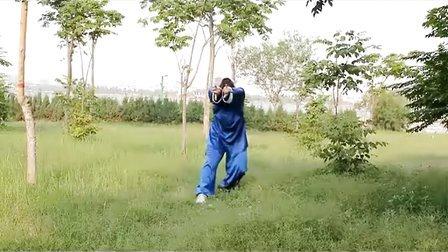 聊城洪武太极吴小杰演练五禽戏