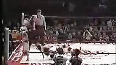 日本2014女子WWE摔角 丰田真奈美MV