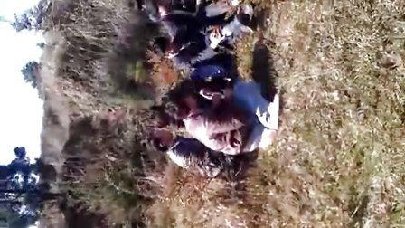 VIDEO0014